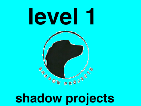 Shadow Projects 64822   SITWEB
