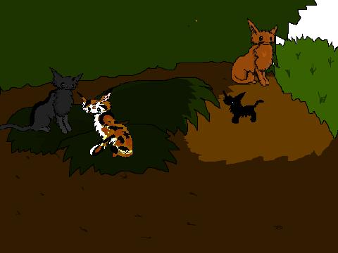 Warrior Cats Game Online Scratch Goodipad
