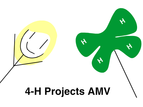4h projects