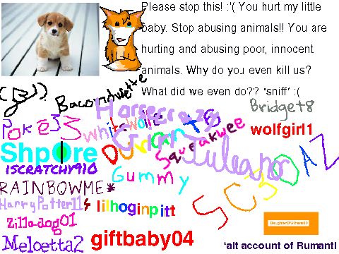 animal cruelty why beat innocent