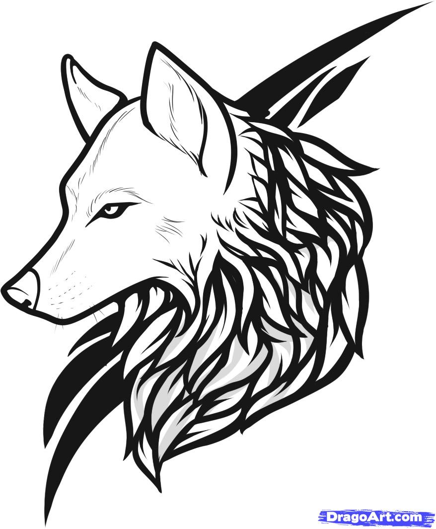 Scroll Down To Read : How To Draw A Wolf On Scratch By Hector Abad  Faciolince